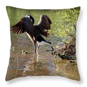 Gaze Into The Sunset Throw Pillow