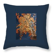 Gazing In Colorado Throw Pillow