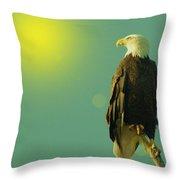 Gazing Sunward Throw Pillow