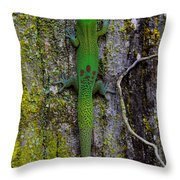 Gecko On Tree Bark Throw Pillow