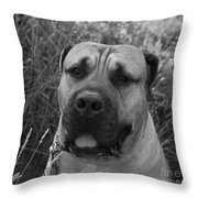 Geegee Throw Pillow