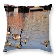 Gees And Goslings 2 Throw Pillow