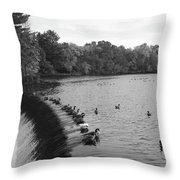Ducks And Canada Geese On The Charles River Throw Pillow