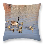 Geese And Goslings 3 Throw Pillow