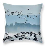 Geese And Gulls Throw Pillow