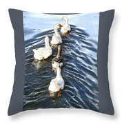 the Geese are leaving Throw Pillow