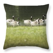 Geese At Spring Meadow Throw Pillow