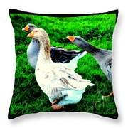 A Couple Of Friendly Geese And One Goose Ready For A Fight  Throw Pillow by Hilde Widerberg