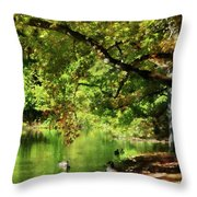 Geese By Pond In Autumn Throw Pillow