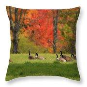 Geese In Autumn Throw Pillow