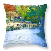 Geese In Pond 2 Throw Pillow