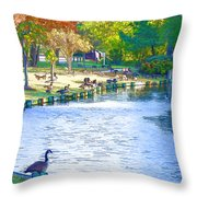 Geese In Pond 3 Throw Pillow