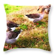 Geese In The Yard Throw Pillow