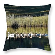 Geese Mother And Young Throw Pillow