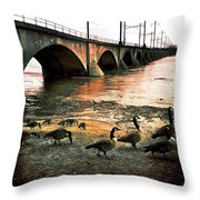 Geese On A Stroll Throw Pillow