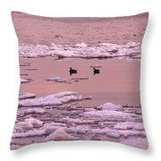 Geese On Lake Huron At Sunset Throw Pillow