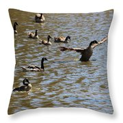 Geese On Lake June 27 2015 Throw Pillow