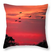 Geese On Their Sunset Arrival Throw Pillow