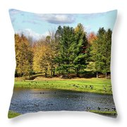 Geese Sanctuary Throw Pillow