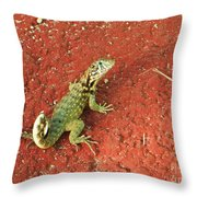 Geico Throw Pillow
