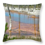 Geisers Throw Pillow