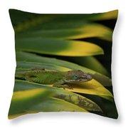 Gekco On Palm  Leaf Throw Pillow