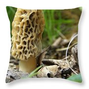 Gem Of The Forest - Morel Mushroom Throw Pillow