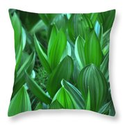 General Grant Meadow Throw Pillow
