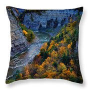 Genesee River Gorge II Throw Pillow
