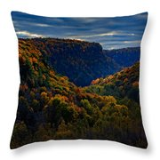 Genesee River Gorge Throw Pillow