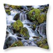 Gentle Cascade Throw Pillow