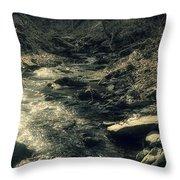 Gentle Creek Flow Throw Pillow