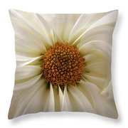 Gentle Curves Throw Pillow