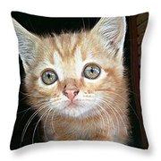 Gentle Ginger Throw Pillow