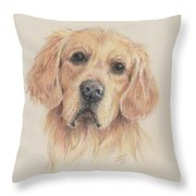 Gentle Gold Throw Pillow