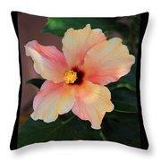Gentle Hibiscus Throw Pillow