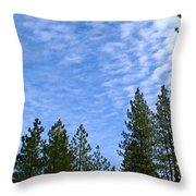 Gentle Sky Throw Pillow