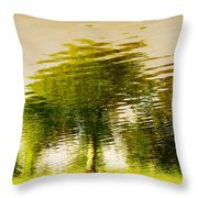 Gentle Sun  Throw Pillow