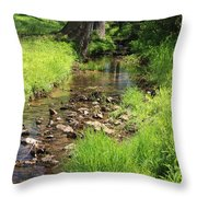 Gently Flowing Brook Throw Pillow
