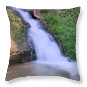 Gently Flowing Throw Pillow