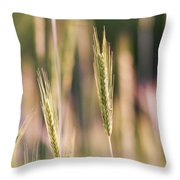 Gently Swaying Throw Pillow