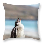 Gentoo Penguin Calling For Mother On Shingle Throw Pillow