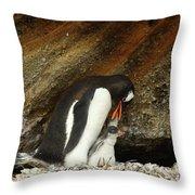 Gentoo Penguin Feeding Chicks Throw Pillow