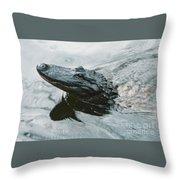 Genuine New O Alligator Throw Pillow