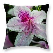 Geometric Beauty Throw Pillow