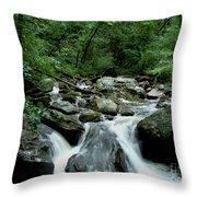 Georgia Mountian Stream Throw Pillow