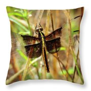 Georgia On My Mind Ray Charles Dragonfly Art Throw Pillow