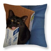 Gepptto The Cat Throw Pillow