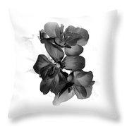 Geranium Black Throw Pillow