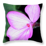 Geranium Blossom Throw Pillow